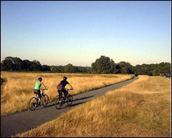double the number of cyclists - cycling through richmond park